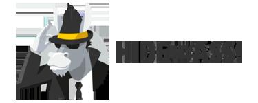 logotipo hidemyassvpn