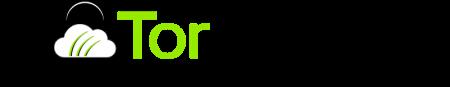 Logo de TorGuard VPN