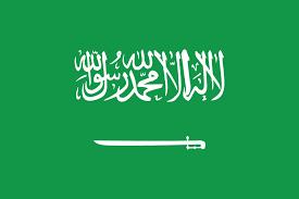 Descargar uno de los vpn de Arabia Saudita
