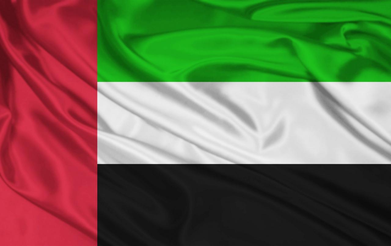 Instalación de vpn de los Emiratos Árabes Unidos