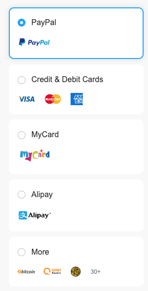 FlyVPN payment method