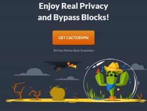 cactusvpn privacy vpn block freedom