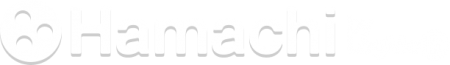 Logo de Logmein Hamachi